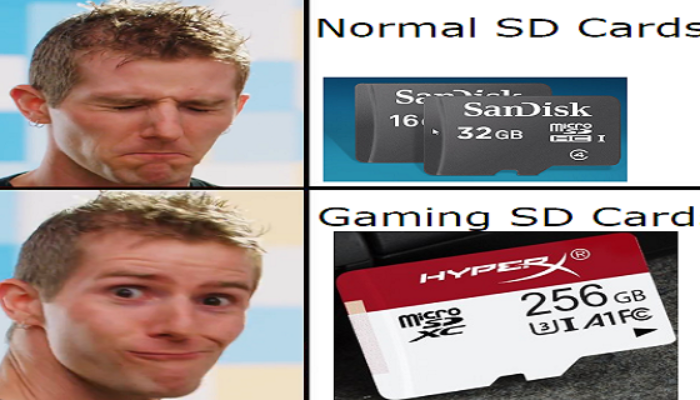 SD Card, How to Choose an SD for Your Camera?