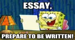 writing essays, How can I write the best college essay?